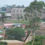 Ngungu Mbanza Profile Picture