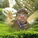 Ado Kavungu Profile Picture