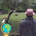 Fred Kouassi Profile Picture