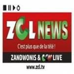Danik On Zclnews Profile Picture