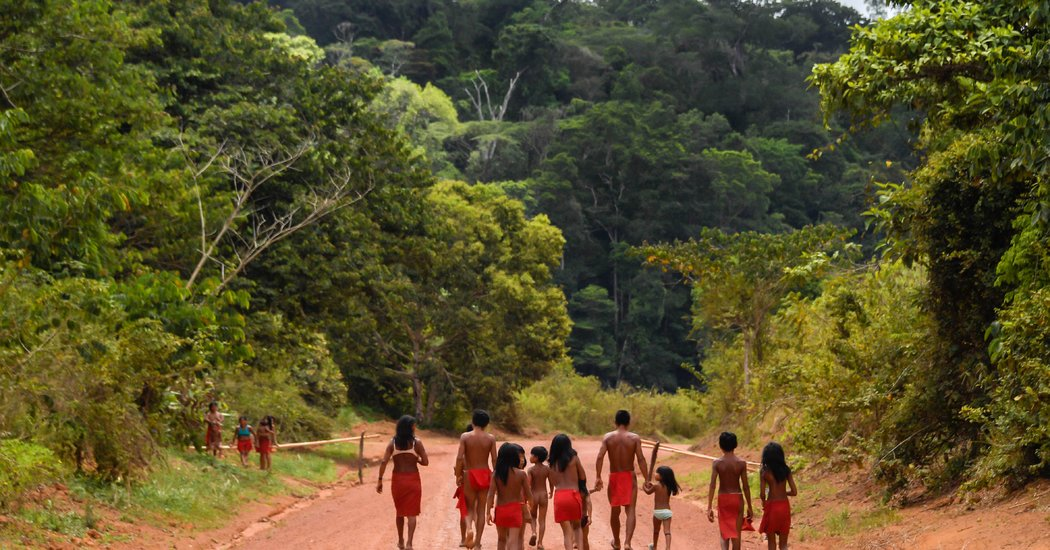Miners Kill Indigenous Leader in Brazil During Invasion of Protected Land - The New York Times