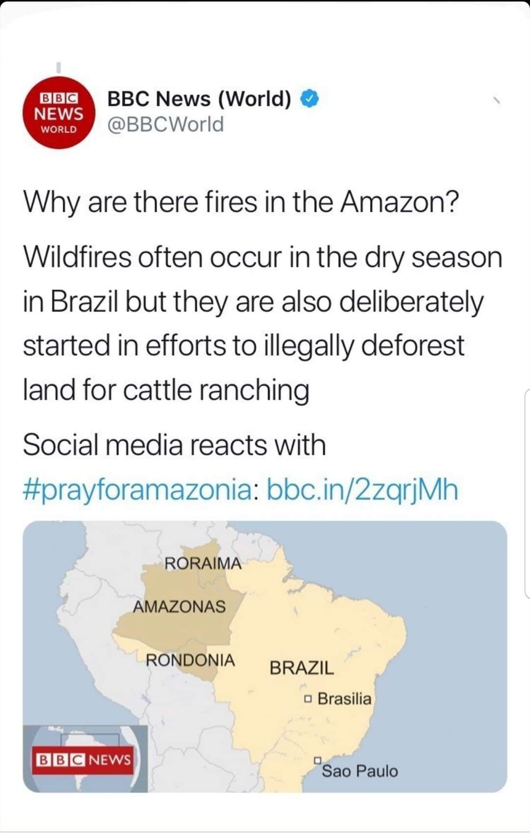 L'Amazonie par ci, Virunga par la... C'est mnt qu'il faut agir demain sera trop tard. Pétitions, mobilisations, actions. La nature nous a tout donné, ns ne faisons que la gaspillé, la maltraité bien souvent au peril mm de nos propres vies pr des interets capitalistes, par des ventriloques égocentriques tjrs plus avides; pseudos investissements qui ne restent pas sans conséquences sur nos vies à tous! Ces gens parlent de Droits de l'Homme ms tuent sciemment, créent des maladies mortelles qui réduisent drastiquement l'espérance de vie alors que nous sommes supposés être dans des pays hypra développés, ils polluent notre environnement, ces gens ne représentent mm pas le quart de la population mais définissent indirectement nos morts pendant qu'eux s'offrent le luxe de s'épargner tout ca dans leur coin de paradis apres avoir tout détruit sur leur passage. Protégeons notre environment, protégeons nos terres, protégeons nous...  N'attendons pas demain!