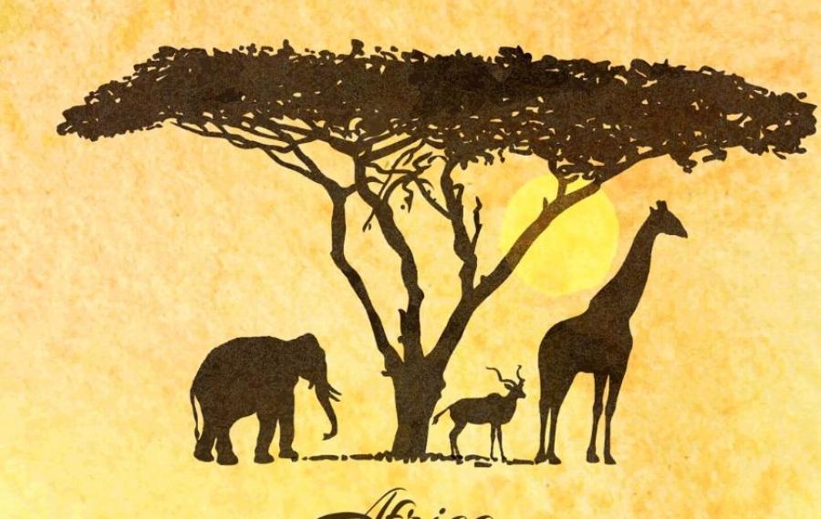 Où aller en Afrique