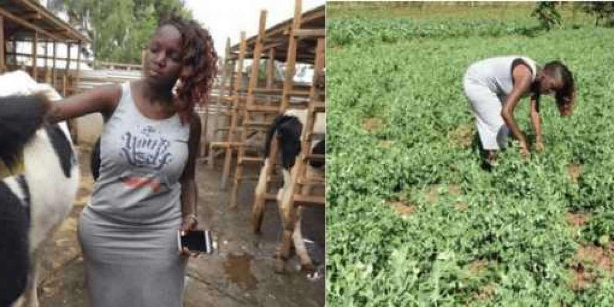 Rencontrez Nakku Justine, la femme kenyane de 29 ans qui gagne beaucoup d'argent grâce à l'agriculture