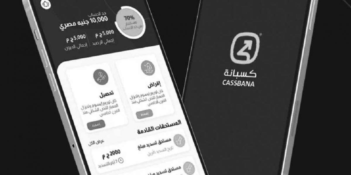 Startup Fintech égyptienne, Cassbana lève 1 million de dollars de financement pré-amorçage
