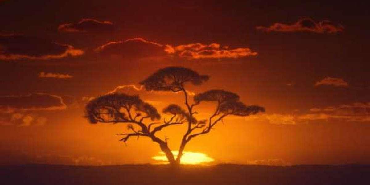 Stressé ? Regardez ce tour de l'Afrique en time-lapse